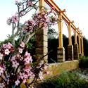 The Malta Garden