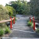 Brigalow Belt Garden