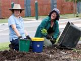 plantingbee
